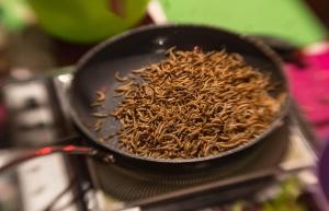 Smażenie larw z przyprawami